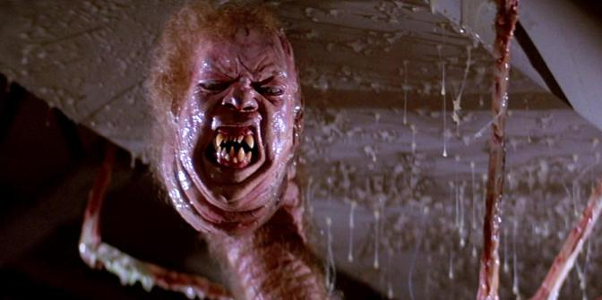 Creature Feature: The Skeevie Inducing Norris-Thing